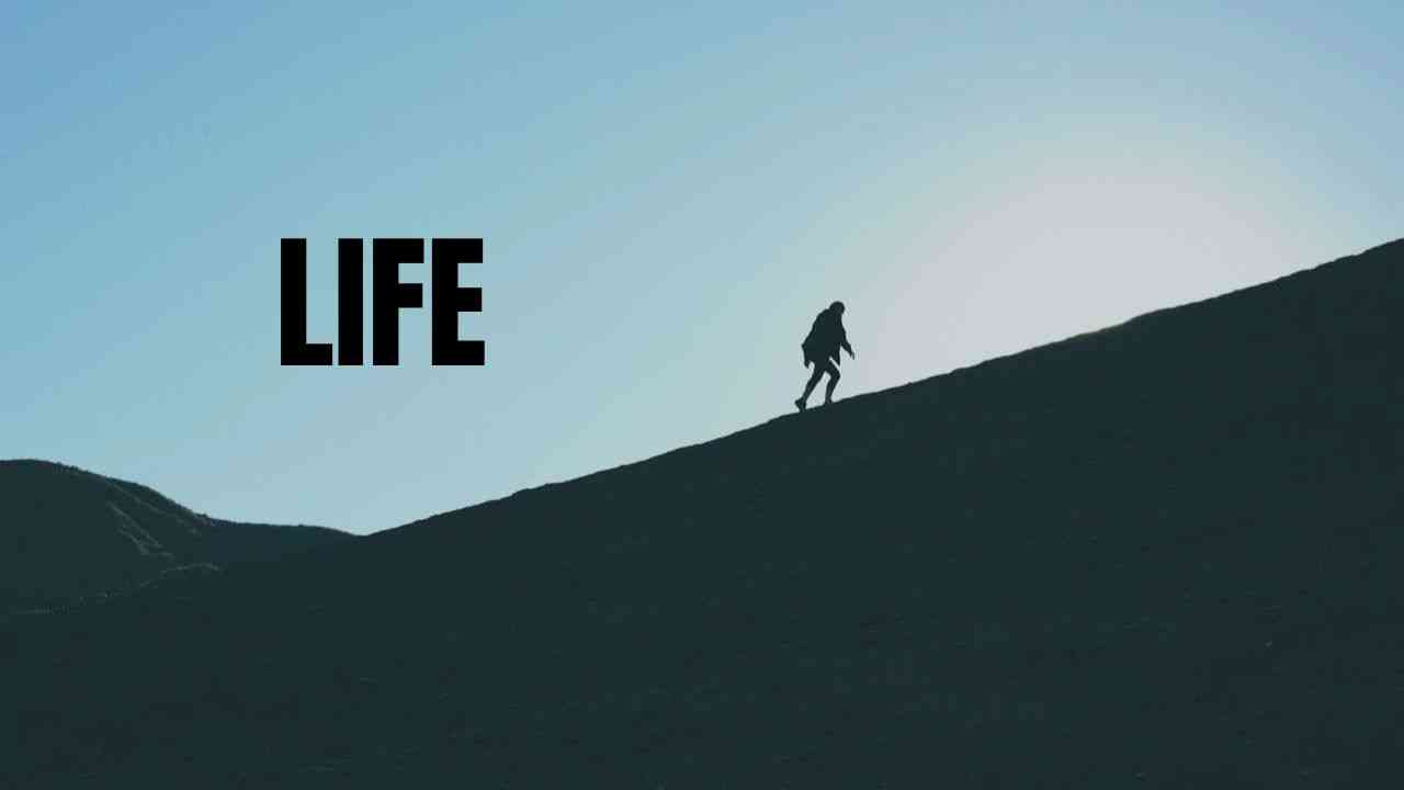 山あり谷ありの人生