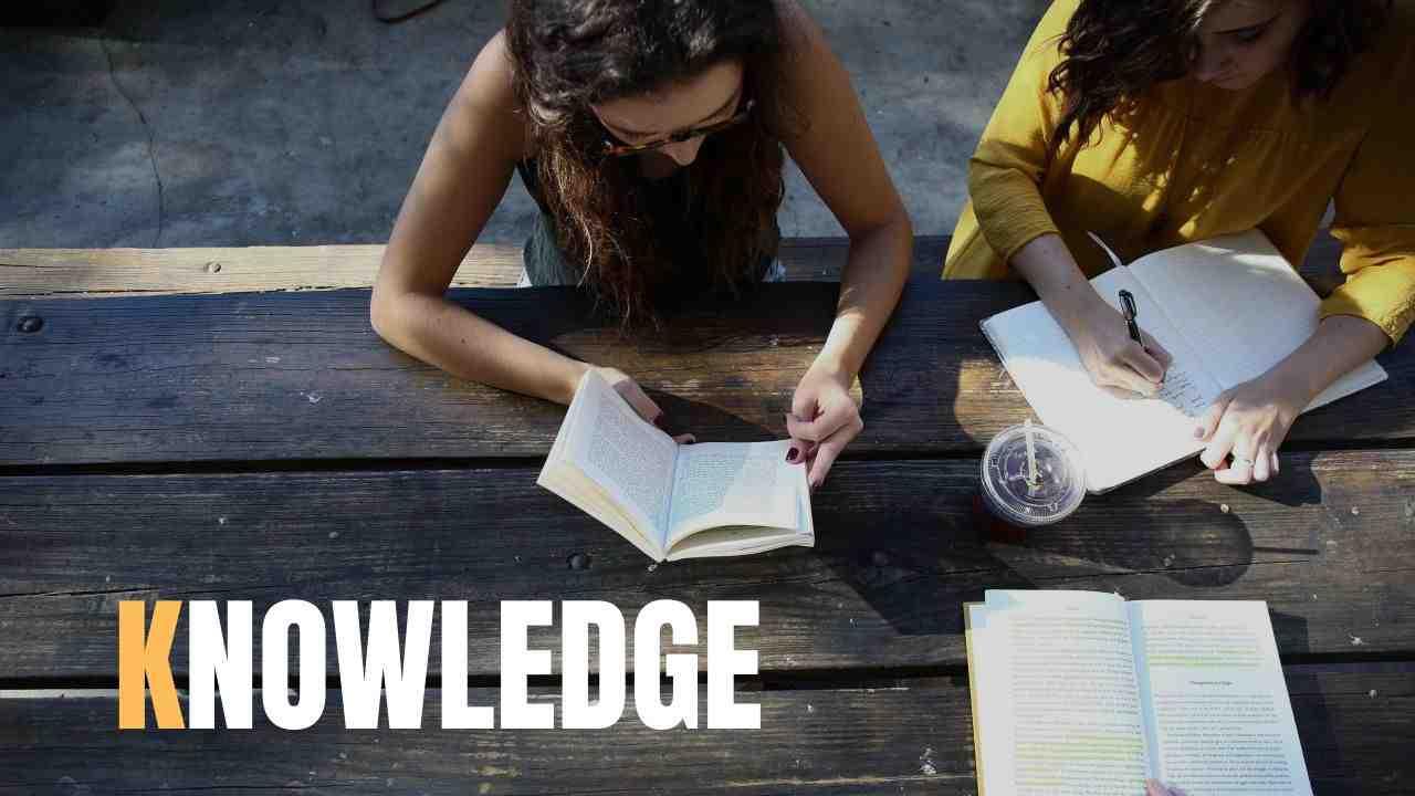 知識が増える
